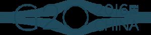 hangzhou_logo